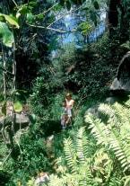 Ania en la isla del placer - thumb 1